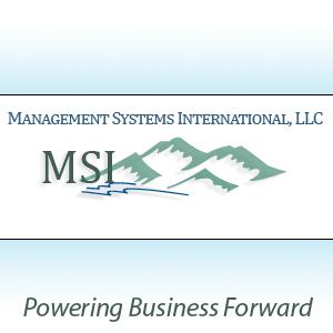 management sytems international